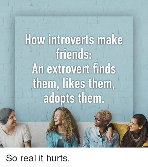 Friends, Memes, and 🤖: How introverts make  friends:  An extrovert finds  them, likes them,  adopts them So real it hurts.
