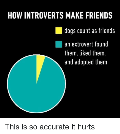 extroverted: HOW INTROVERTS MAKE FRIENDS  dogs count as friends  an extrovert found  them, liked them,  and adopted them This is so accurate it hurts