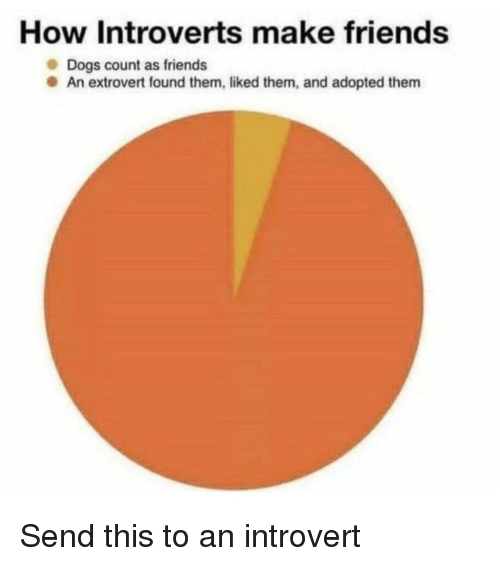 an introvert: How Introverts make friends  Dogs count as friends  An extrovert found them, liked them, and adopted them Send this to an introvert