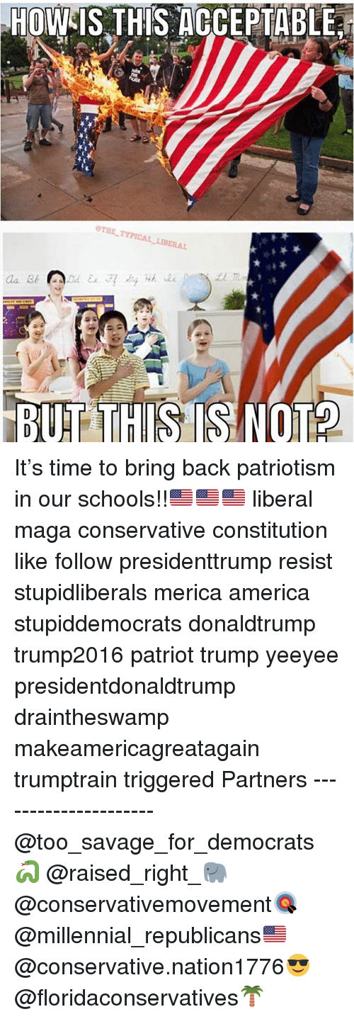 America, Memes, and Savage: HOW IS THIS DOCEPTABLE  THETYPICAL  BERAL  BUT THIS IS NOT? It's time to bring back patriotism in our schools!!🇺🇸🇺🇸🇺🇸 liberal maga conservative constitution like follow presidenttrump resist stupidliberals merica america stupiddemocrats donaldtrump trump2016 patriot trump yeeyee presidentdonaldtrump draintheswamp makeamericagreatagain trumptrain triggered Partners --------------------- @too_savage_for_democrats🐍 @raised_right_🐘 @conservativemovement🎯 @millennial_republicans🇺🇸 @conservative.nation1776😎 @floridaconservatives🌴