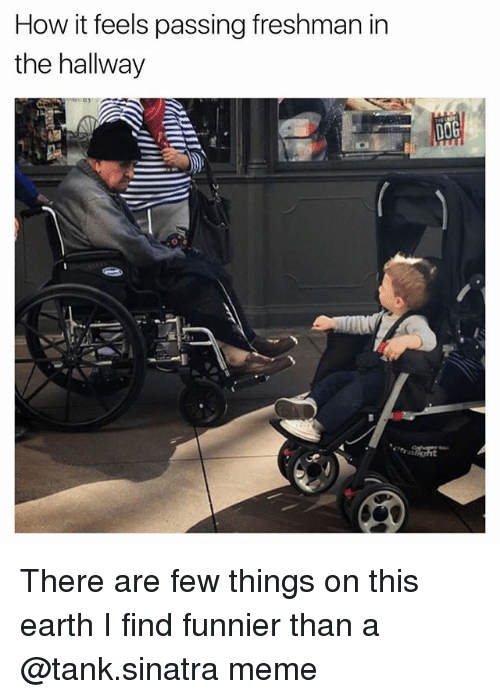 Meme, Earth, and Dank Memes: How it feels passing freshman in  the hallway There are few things on this earth I find funnier than a @tank.sinatra meme