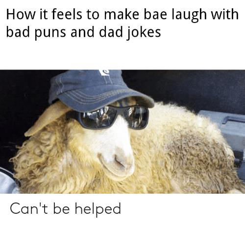 Bad Puns: How it feels to make bae laugh with  bad puns and dad jokes Can't be helped