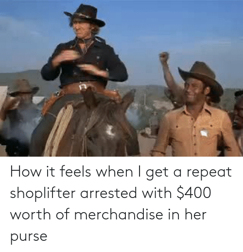 feels: How it feels when I get a repeat shoplifter arrested with $400 worth of merchandise in her purse