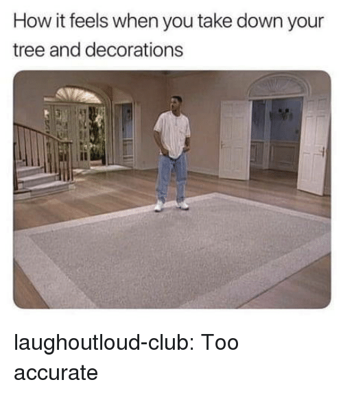 decorations: How it feels when you take down your  tree and decorations laughoutloud-club:  Too accurate