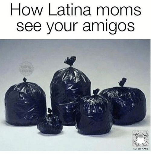 Memes, Moms, and 🤖: How Latina moms  See Vour amigos  SC: BLSNAPZ