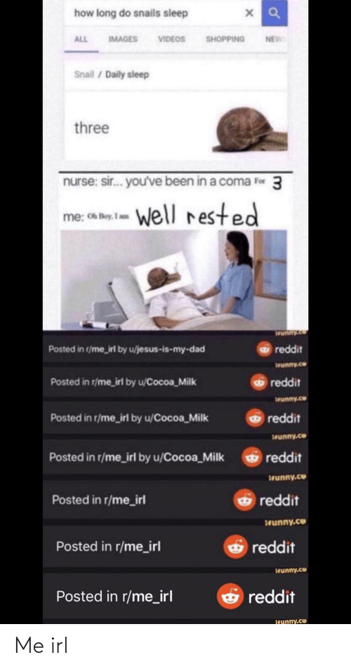 sir-youve-been-in-a-coma: how long do snails sieep  SHOPPING  IMAGES VIDEOS  NEW  ALL  Snail / Daily sleep  three  nurse: sir. you've been in a coma Fer 3  me, ca  well rested  Oh Boy, I am  Posted in r/me_irl by u/jesus-is-my-dad  reddit  wunny.co  Posted in r/me_irl by u/Cocoa_Milk  reddit  wunny.co  reddit  Posted in r/me_irl by u/Cocoa_Milk  wunny.co  Posted in r/me_irl by u/Cocoa_Milk  reddit  Swunny.co  O reddit  Posted in r/me_irl  runny.co  reddit  Posted in r/me_irl  Hunny.co  O reddit  Posted in r/me_irl  teunny.ce Me irl