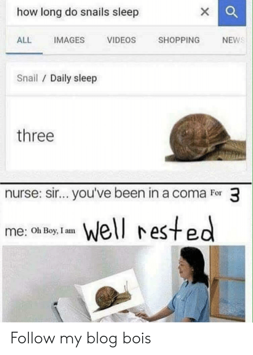 sir-youve-been-in-a-coma: how long do snails sleep  ALL IMAGES VIDEOS SHOPPING NEW  Snail Daily sleep  three  nurse: sir...you've been in a coma For 3  me (ot b el reste  Oh Boy, I am Follow my blog bois