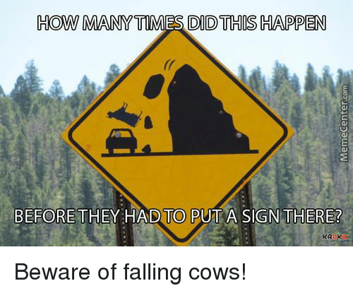 Mannis: HOW MANNY TIMES DID THIS HAPPEN  BEFORE THEY HAD TO PUT A SIGN THERE? Beware of falling cows!