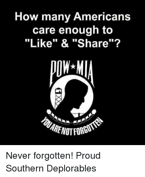 "Memes, Proud, and Never: How many Americans  care enough to  ""Like"" & ""Share""? Never forgotten! Proud Southern Deplorables"