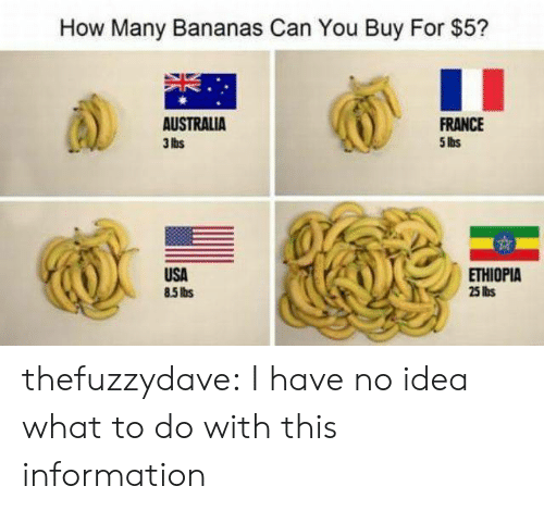 ethiopia: How Many Bananas Can You Buy For $5?  AUSTRALIA  3 lbs  FRANCE  5 lbs  USA  85Ibs  ETHIOPIA  25 lis thefuzzydave:  I have no idea what to do with this information