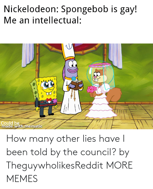 Many: How many other lies have I been told by the council? by TheguywholikesReddit MORE MEMES
