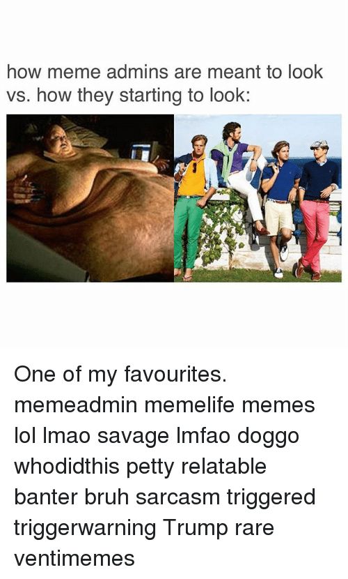 Bruh, Lmao, and Lol: how meme admins are meant to look  vs. how they starting to look: One of my favourites. memeadmin memelife memes lol lmao savage lmfao doggo whodidthis petty relatable banter bruh sarcasm triggered triggerwarning Trump rare ventimemes