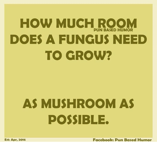 Facebook Pun: HOW MUCH ROOM  PUN BASED HUMOR  DOES A FUNGUS NEED  TO GROW?  AS MUSHROOM AS  POSSIBLE.  Est: Apr, 2016  Facebook: Pun Based Humor