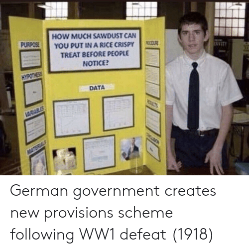 ww1: HOW MUCH SAWDUST CAN  YOU PUT IN A RICE CRISPY  TREAT BEFORE PEOPLE  NOTICE  PURPOSE  AVIT  HYPOTHESS  DATA German government creates new provisions scheme following WW1 defeat (1918)