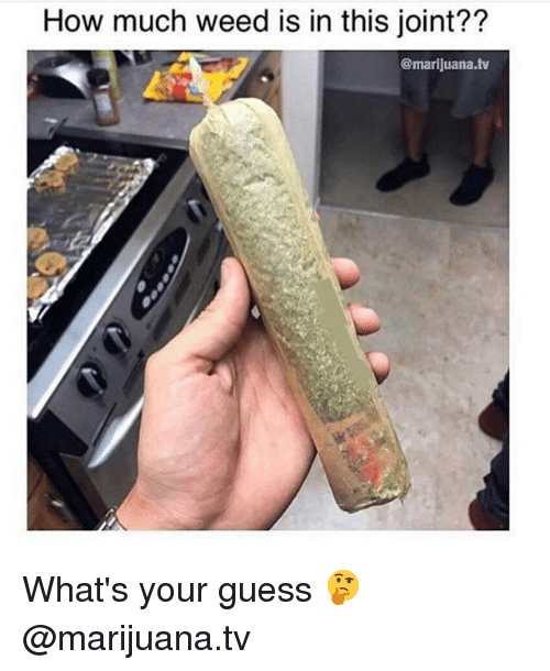 Memes, Weed, and Guess: How much weed is in this joint??  @marijuana.tv What's your guess 🤔 @marijuana.tv