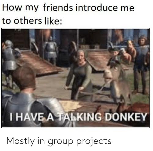 Group Projects: How my friends introduce me  to others like:  I HAVE A TALKING DONKEY Mostly in group projects