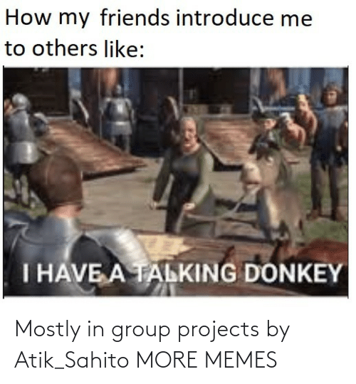 Group Projects: How my friends introduce me  to others like:  I HAVE A TALKING DONKEY Mostly in group projects by Atik_Sahito MORE MEMES