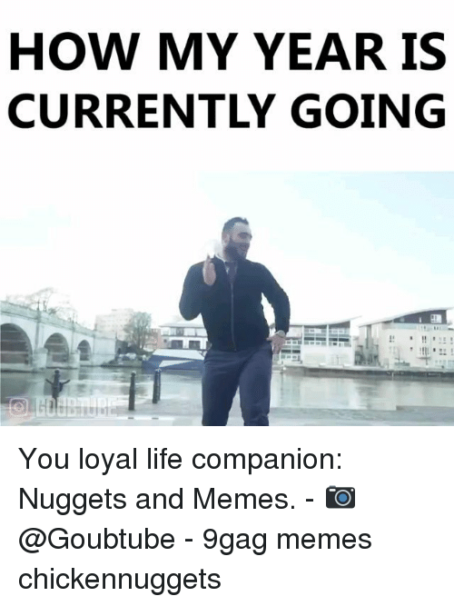 9gag, Life, and Memes: HOW MY YEAR IS  CURRENTLY GOING You loyal life companion: Nuggets and Memes. - 📷 @Goubtube - 9gag memes chickennuggets