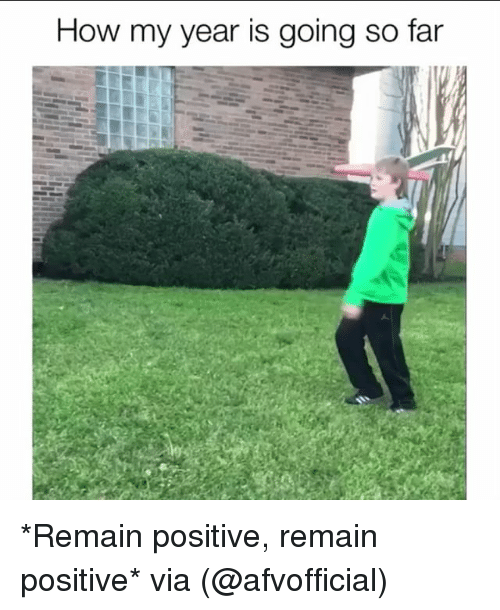 Memes, 🤖, and How: How my year is going so far *Remain positive, remain positive* via (@afvofficial)