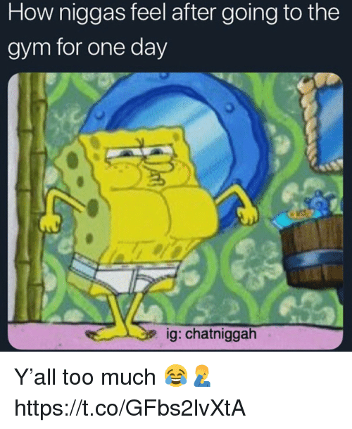Gym, Too Much, and How: How niggas feel after going to the  gym for one day  ig: chatniggah Y'all too much 😂🤦‍♂️ https://t.co/GFbs2lvXtA