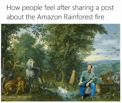Classical Art: How people feel after sharing a post  about the Amazon Rainforest fire  CLASSICAL ART MEMES  facebook.com/classicalartimemes