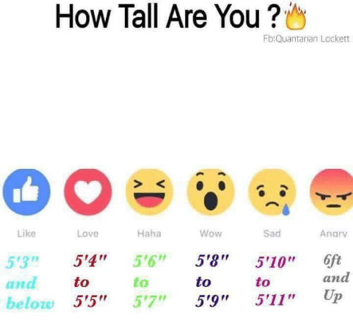 "Love, Wow, and Sad: How Tall Are You ?  Fb:Quantarian Lockett  S K  Like  Love  Haha  Wow  Sad  Anarv  53 5'4"" 5'6"" 5'8 510"" 6ft  to  to  to  to  and  ana  beloze 5'5"" 57"" 5'9"" 5'11"" Up"