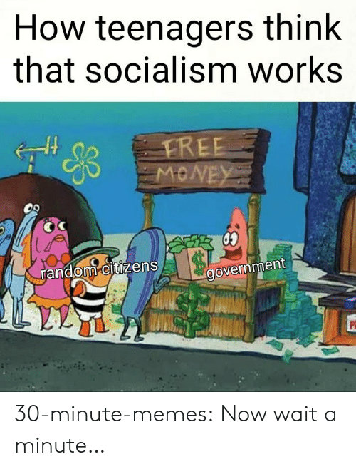 Socialism: How teenagers think  that socialism works  random citizens  government 30-minute-memes:  Now wait a minute…