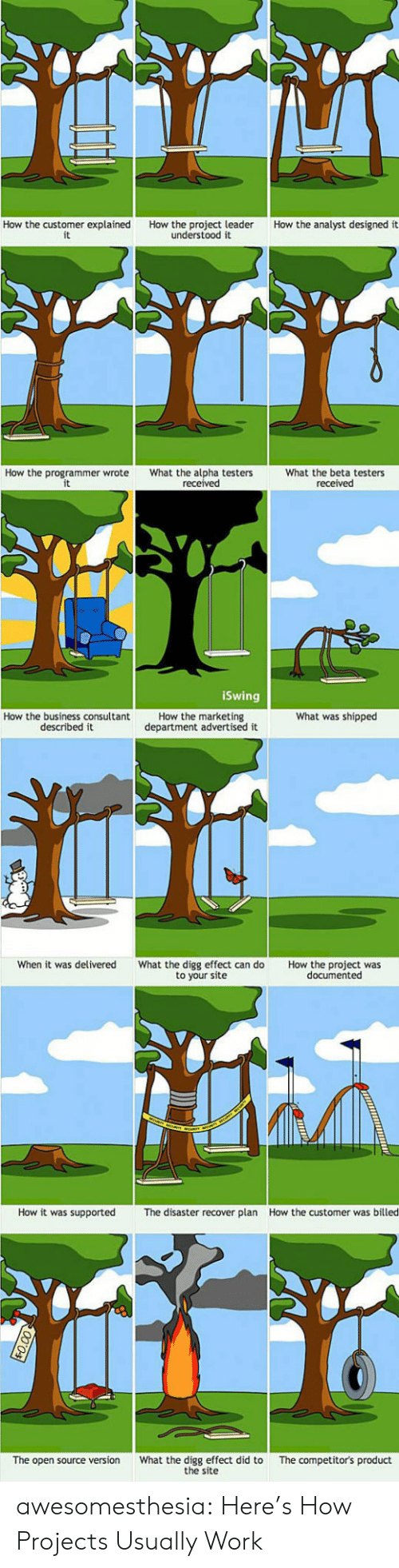 marketing: How the customer explained  it  How the analyst designed it  How the project leader  understood it  How the programmer wrote  What the alpha testers  received  What the beta testers  received  iSwing  How the marketing  department advertised it  What was shipped  How the business consultant  described it  When it was delivered  What the digg effect can do  to your site  How the project was  documented  How it was supported  How the customer was billed  The disaster recover plan  What the digg effect did to  the site  The competitor's product  The open source version awesomesthesia:  Here's How Projects Usually Work