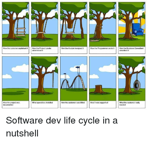 Consultant: How the customer explained itHow the Project Leader  How the Analyst designed it  How the Programmer wrote it  How the Business Consultant  described it  understood it  What operations installed  How the project was  documented  What the customer really  needed  How the customer was billed How it was supported Software dev life cycle in a nutshell