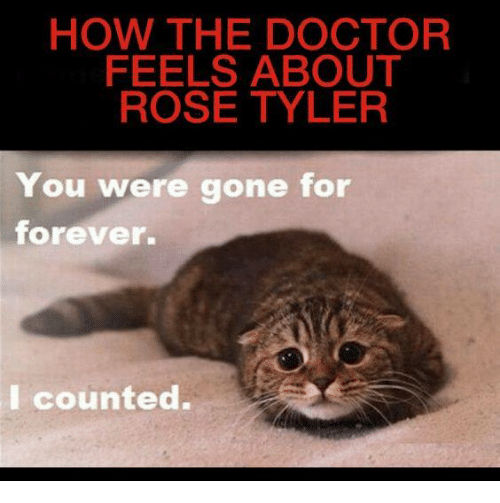 Doctor, Memes, and Forever: HOW THE DOCTOR  FEELS ABOUT  ROSE TYLER  You were gone for  forever.  I counted.
