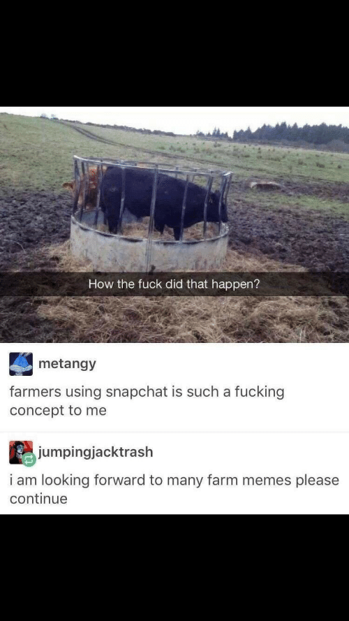 How The Fuck: How the fuck did that happen?  metangy  farmers using snapchat is such a fucking  concept to me  jumpingjacktrash  i am looking forward to many farm memes please  continue