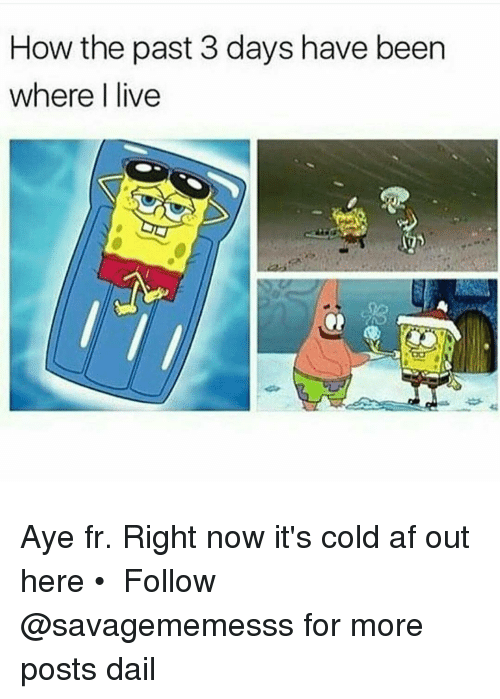 Memes, 🤖, and Afs: How the past 3 days have been  where I live Aye fr. Right now it's cold af out here • ➫➫ Follow @savagememesss for more posts dail