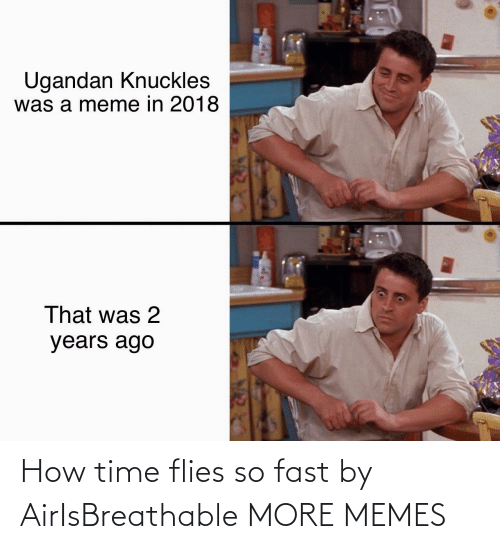 Flies: How time flies so fast by AirIsBreathable MORE MEMES