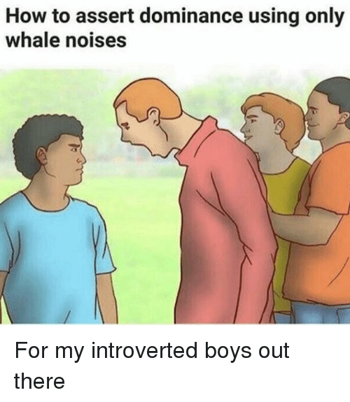 How To, Boys, and How: How to assert dominance using only  whale noises For my introverted boys out there