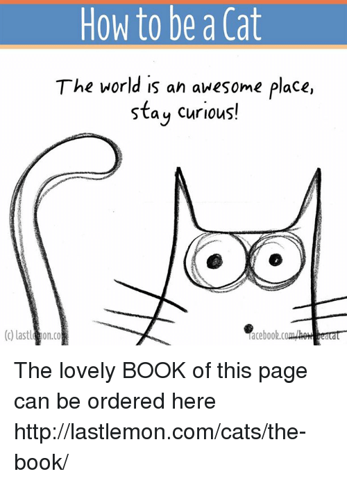 memes: How to be a Cat  The world is an awesome place,  stay curious!  (c) lastl on co  aceboob.c  bea The lovely BOOK of this page can be ordered here http://lastlemon.com/cats/the-book/