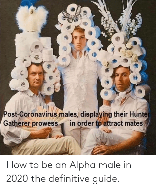 guide: How to be an Alpha male in 2020 the definitive guide.