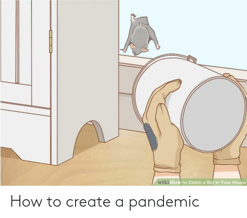 create a: How to create a pandemic
