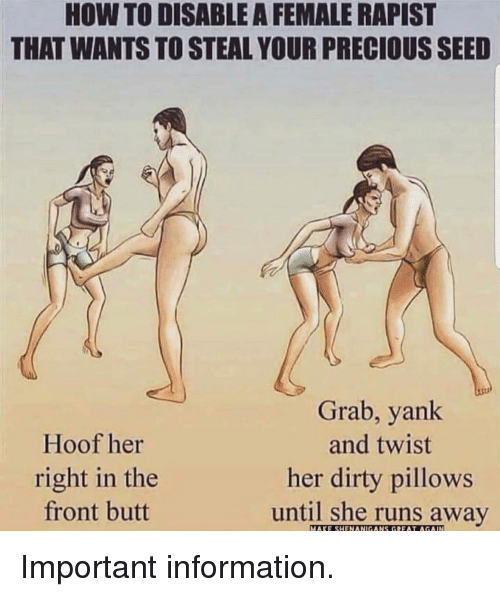 Runs Away: HOW TO DISABLE A FEMALE RAPIST  THAT WANTS TO STEAL YOUR PRECIOUS SEED  Hoof her  right in the  front butt  Grab, yank  and twist  her dirty pillows  until she runs away  MAKE SHENANIGANS GREAT AGAIN Important information.