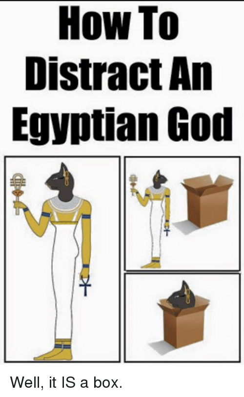 egyptian god: How To  Distract An  Egyptian God Well, it IS a box.