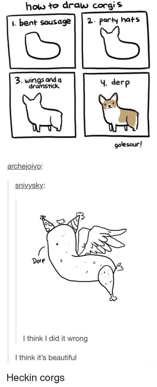 bent: how to draw corgis  i. bent sausage2 paty hats  3. wings and q  drumstick  4. derp  galesaur!  archejoiyo  snivysky:  Dere  I think I did it wrong  I think it's beautiful Heckin corgs