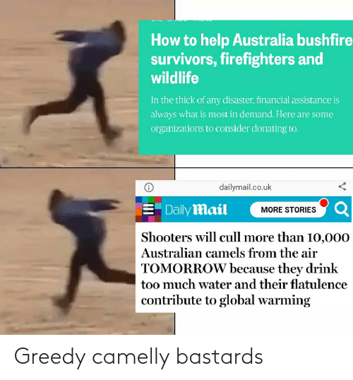 dailymail.co.uk: How to help Australia bushfire  survivors, firefighters and  wildlife  In the thick of any disaster, financial assistance is  always what is most in demand. Here are some  organizations to consider donating to.  dailymail.co.uk  E Daily Mail  MORE STORIES Q  Shooters will cull more than 10,000  Australian camels from the air  TOMORROW because they drink  too much water and their flatulence  contribute to global warming Greedy camelly bastards