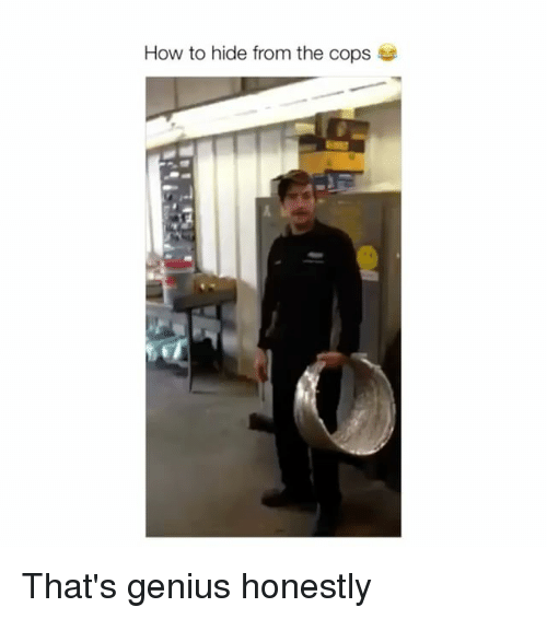 Genius, How To, and How: How to hide from the cops That's genius honestly