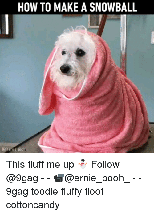 9gag, Memes, and How To: HOW TO MAKE A SNOWBALL  G@ernie pooh This fluff me up ⛄️ Follow @9gag - - 📹@ernie_pooh_ - - 9gag toodle fluffy floof cottoncandy