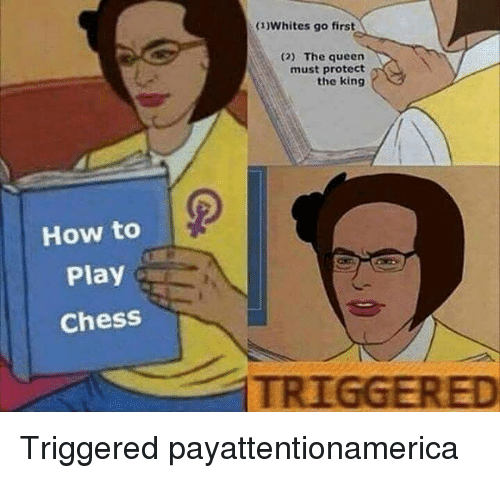 Memes, Queen, and Chess: How to  Play  Chess  (1)Whites go first  (2) The queen  must protect  the king Triggered payattentionamerica