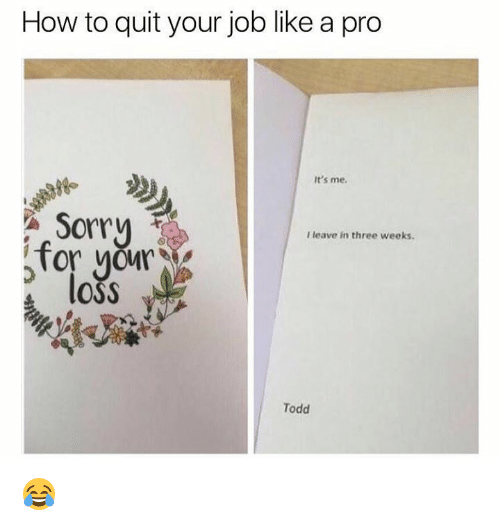 Dank, Sorry, and How To: How to quit your job like a pro  It's me  Sorry  Tor OM  loss  I leave in three weeks.  Todd 😂