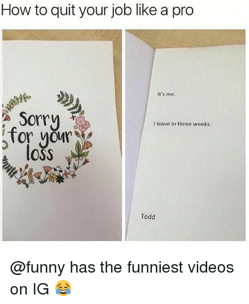 Funny, Memes, and Sorry: How to quit your job like a pro  It's me.  Sorry  Tor yourV  e lOSS  I leave in three weeks.  Todd @funny has the funniest videos on IG 😂