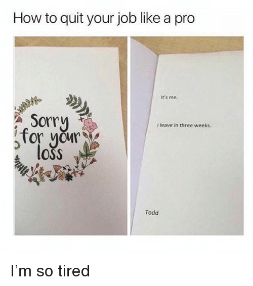Memes, Sorry, and How To: How to quit your job like a pro  It's me.  Sorry  I leave in three weeks.  Tor your  loss  Todd I'm so tired