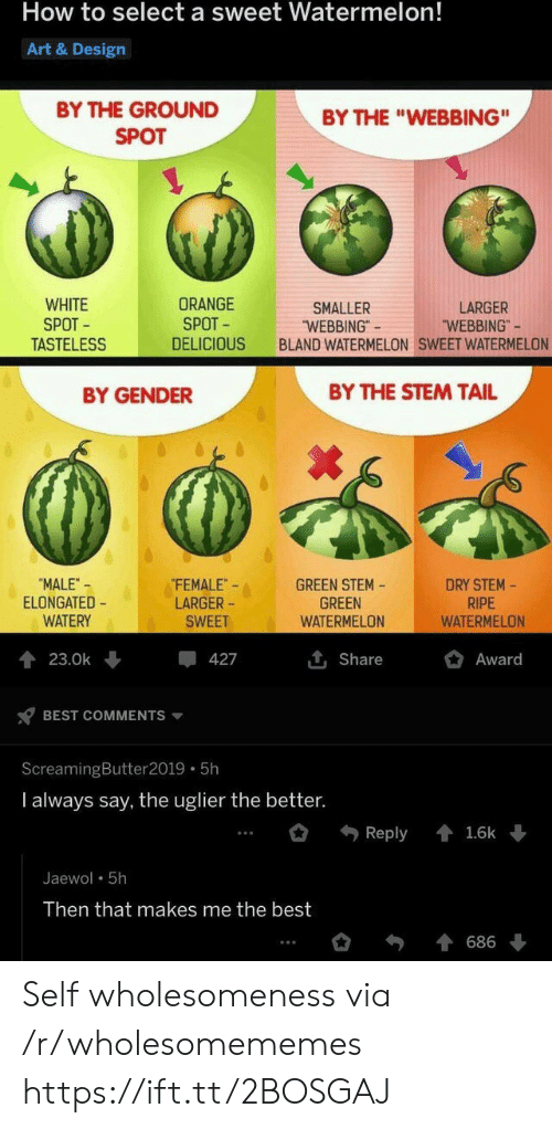"tail: How to select a sweet Watermelon!  Art & Design  BY THE GROUND  BY THE ""WEBBING""  SPOT  WHITE  SPOT  TASTELESS  ORANGE  SPOT  LARGER  ""WEBBING""  SMALLER  ""WEBBING""  BLAND WATERMELON SWEET WATERMELON  DELICIOUS  BY THE STEM TAIL  BY GENDER  FEMALE  LARGER  DRY STEM-  RIPE  WATERMELON  ""MALE-  ELONGATED  WATERY  GREEN STEM  GREEN  WATERMELON  SWEET  Award  23.0k  427  Share  BEST COMMENTS  ScreamingButter 2019 5h  I always say, the uglier the better.  Reply  1.6k  Jaewol 5h  Then that makes me the best  686 Self wholesomeness via /r/wholesomememes https://ift.tt/2BOSGAJ"