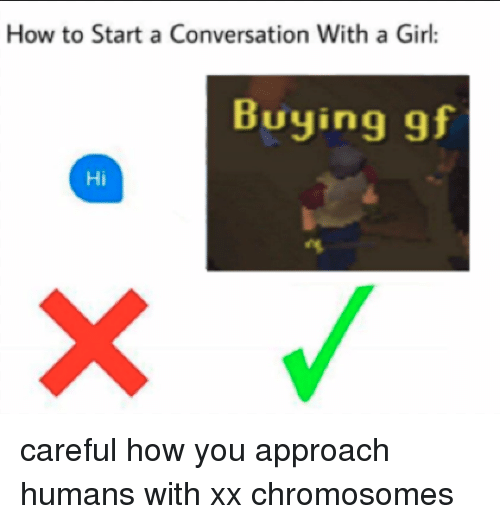 Start A Conversation With A Girl: How to Start a Conversation With a Girl:  Buying gf  Hi <p>careful how you approach humans with xx chromosomes</p>