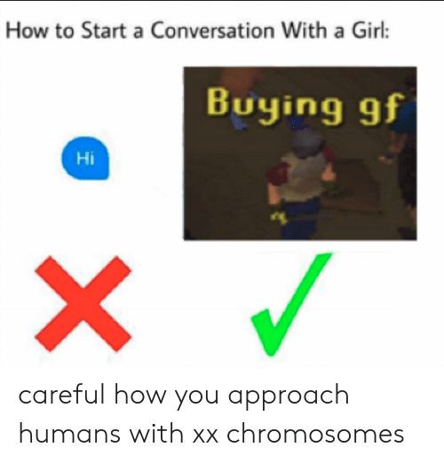 Start A Conversation With A Girl: How to Start a Conversation With a Girl:  Buying gf  Hi careful how you approach humans with xx chromosomes